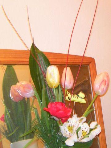 Flower0101