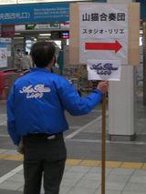 Yamaneko01