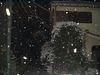 Snow060207B