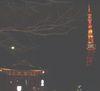 TokyoTower051227A