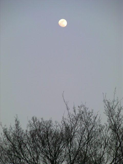 Moonovertower